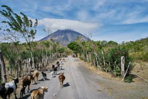 2016 Nicaragua Mission Trip 708